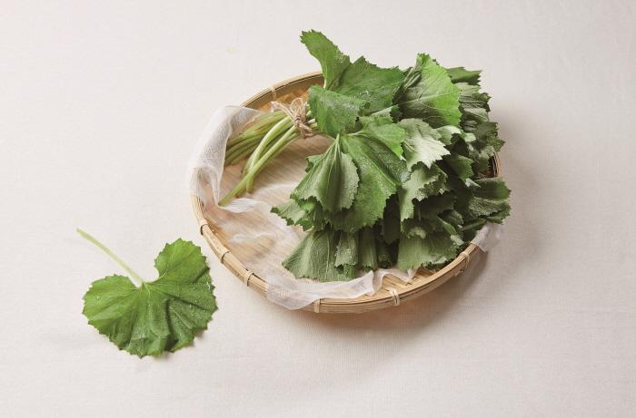 항암 효과 있는 봄 채소 '머위' 이렇게 먹어요